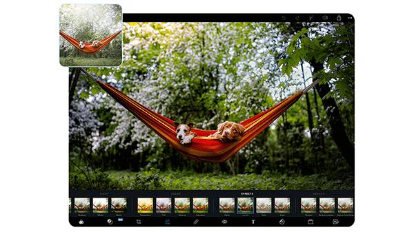 【Photoshop Express】Adobe 官方出品的免费在线抠图神器
